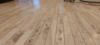 Maple wood floorbefore